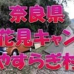 奈良キャンプ ~春のお花見キャンプ~ サーカスtc