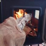 薪ストーブキャンプ  コールマンタフスクリーンタープ400に薪ストーブをインストール(上出し)