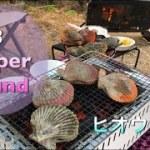 #17 キャンプ行こうぜ 蒲江で海鮮を堪能したよ!ヒオウギ貝食べよう