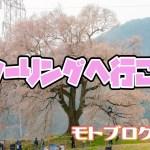 【桜ツーリング】樹齢330年!わに塚の桜【モトブログ#21】