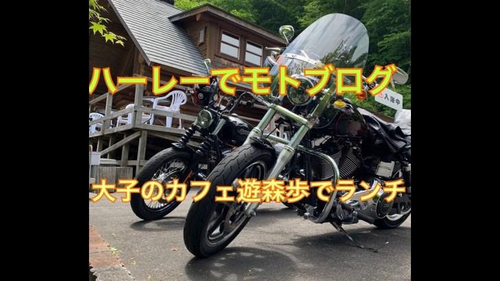 ダイナローライダーとツーリング〜大子カフェ遊森歩〜