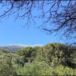 雨のカリフォルニアで2泊キャンプ【後編】 〜晴れときどきチーズバーガー〜