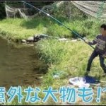 上大島キャンプ場 ファミリー釣堀  意外と釣れる