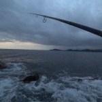 【 釣り 】vol 043 ヒラスズキを釣りに行ってきた釣れません 20200124