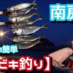 【サビキ釣り】アジ&〇〇〇!だれでも簡単サビキ釣り!新境地で!