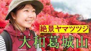 【女子ソロ登山】大和葛城山の絶景つつじ園がみたい!山ガールと360度カメラ