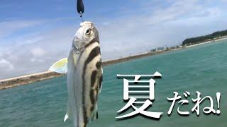 【沖縄ルアー釣り】ライトゲームで小物釣り|リーフでウエーディングしたけど…。