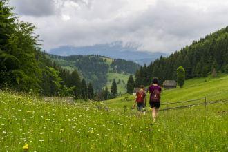 DSC03733-outdoor-activities-romania