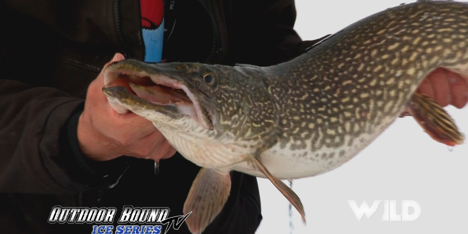 Monster Manitoba Pike Outdoor Bound TV
