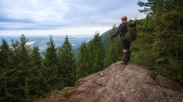 hiking pole buying guide