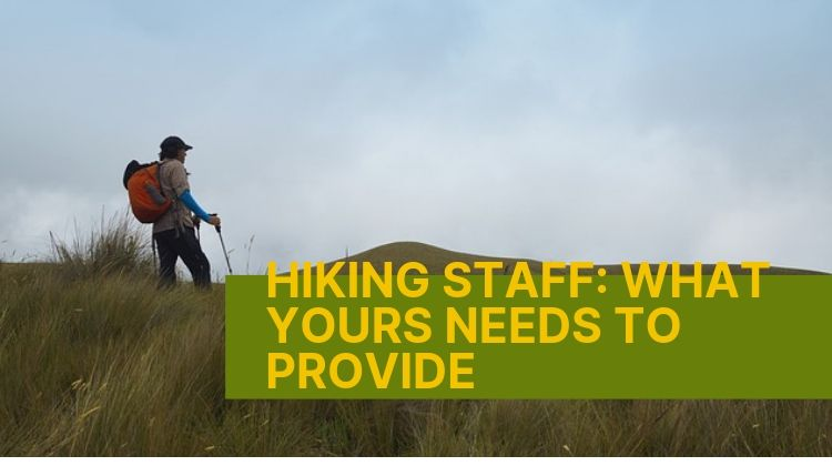 Hiking Staff: What Yours Needs To Provide