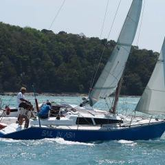 Pinnochio racing charter yacht Sail in Asia