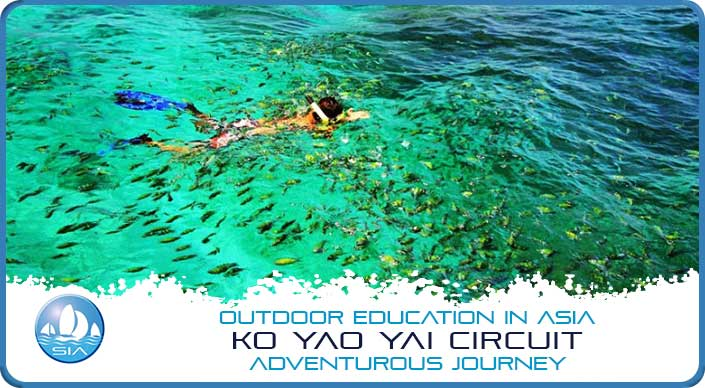 Snorkelling among tropical fish on Koh Yao Yai Adventurous Journey
