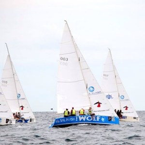 sailing trips on the one design keelboats