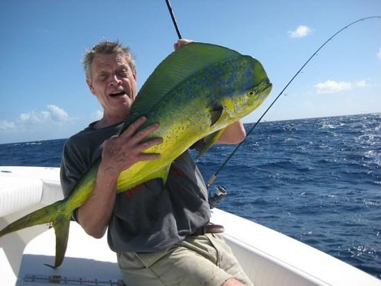 angler holding dolphin fish mahimahi
