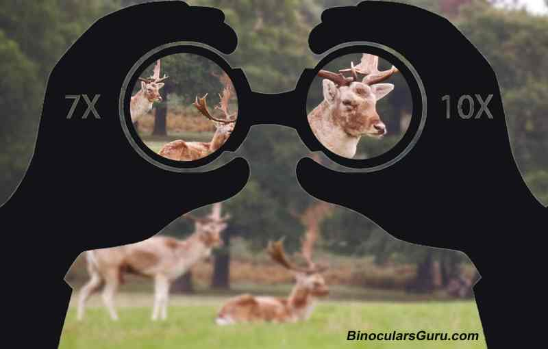 magnification of binoculars