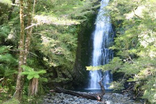 No Fiordland trip without waterfalls.