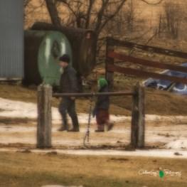 Blair Amish Project 136