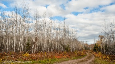 OutdoorGuyPhotography-3012