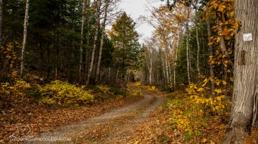 OutdoorGuyPhotography-3633