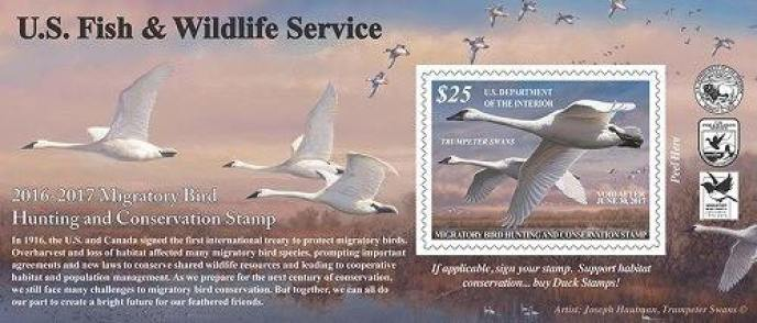 2016-2017 Federal Duck Stamp PSA (1)