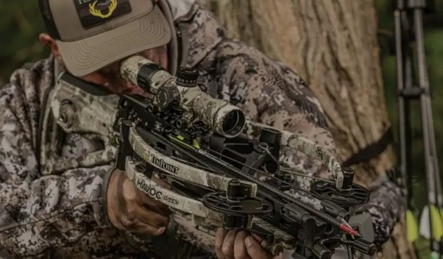 Five of the Best Crossbows You Can Buy