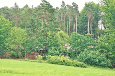 Baumhaushotel Rosenberg