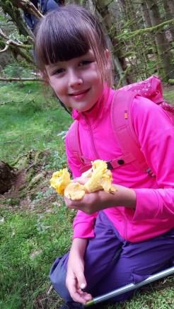 Camping Sandnes Mandal 7