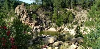 Camping U Rosumarinu