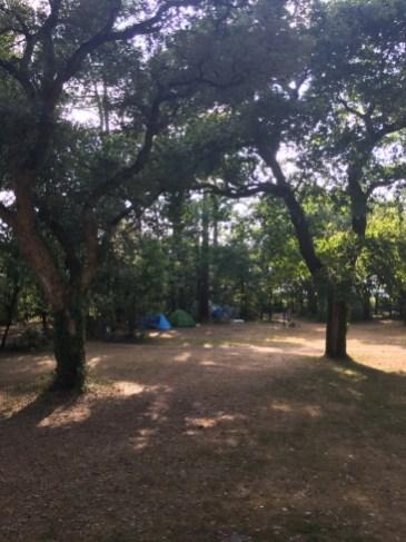 camping aquitaine du toy 14