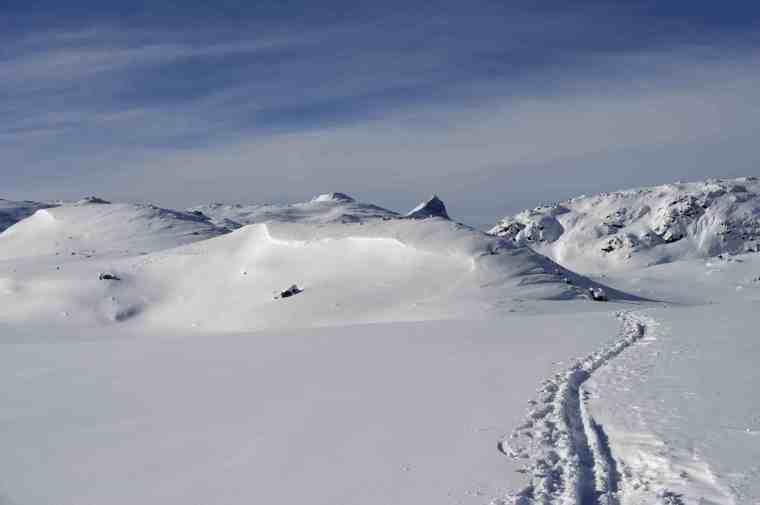 backcountry skiing tracks