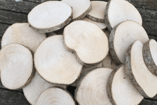 50 Large Undrilled Wood Cookies