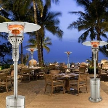 evenglo infra red radiant patio heater stainless lp