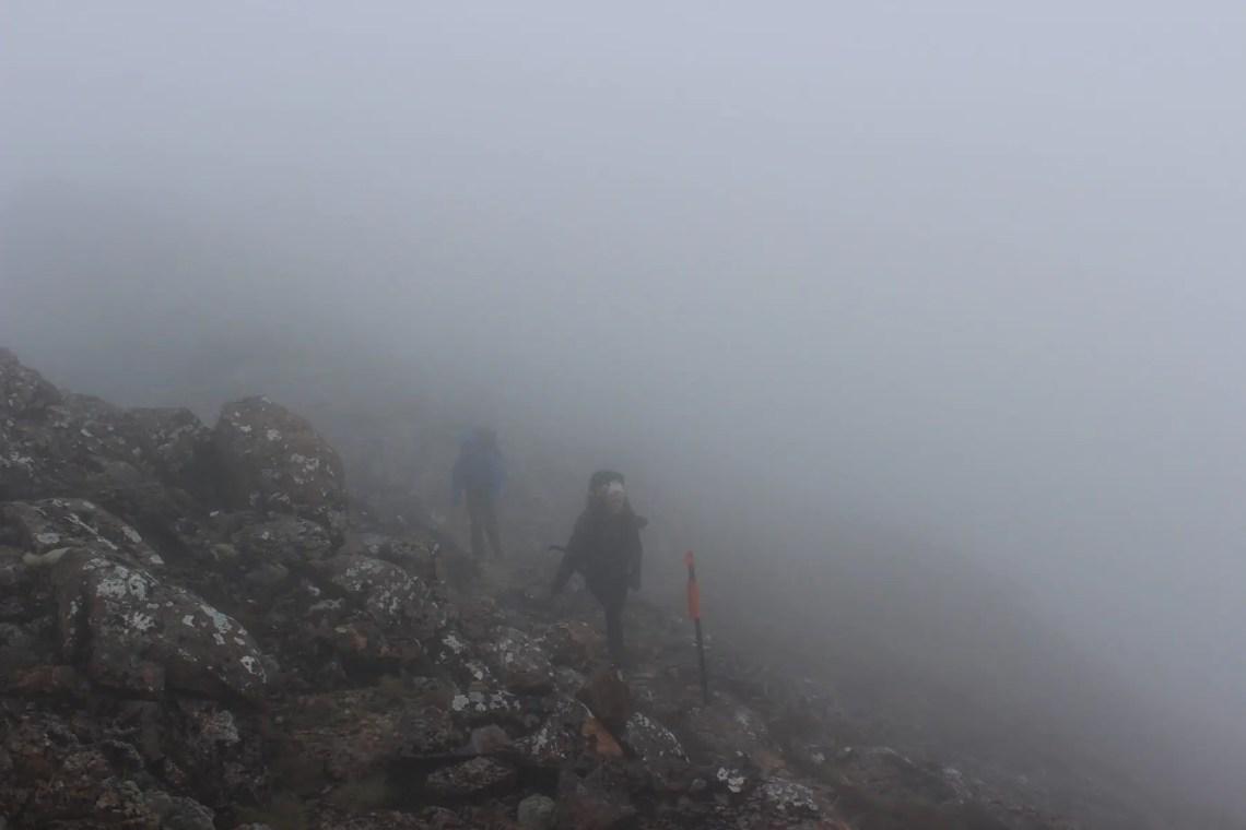 Mt Rintoul Te Araroa Fernwanderung Neuseeland