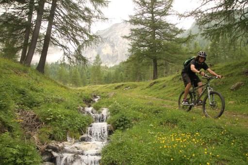 Vinschgau Sven Trail