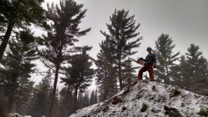 Chainsaw Work in the Snow