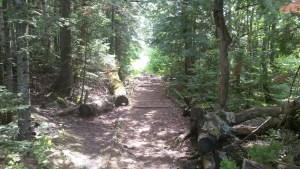 Boarder Trail Portage BWCA