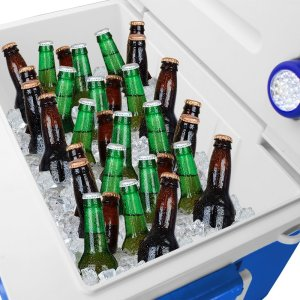 rolling cooler with bluetooth speaker