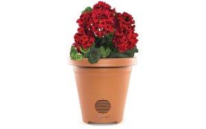 best planter speaker for patio