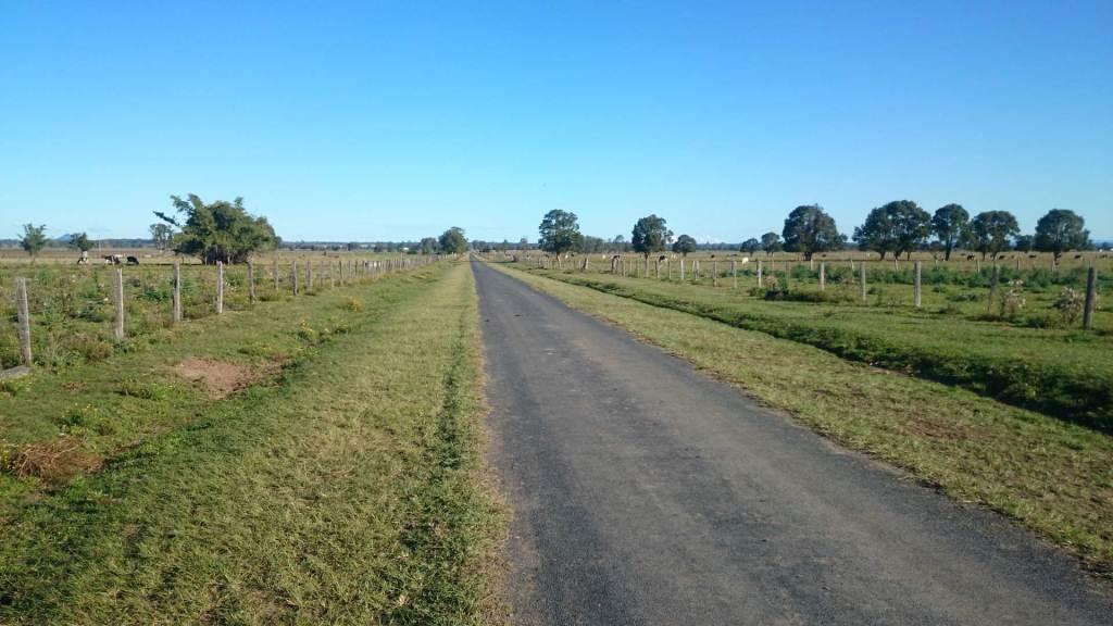 Laneway at Ulmarra, NSW