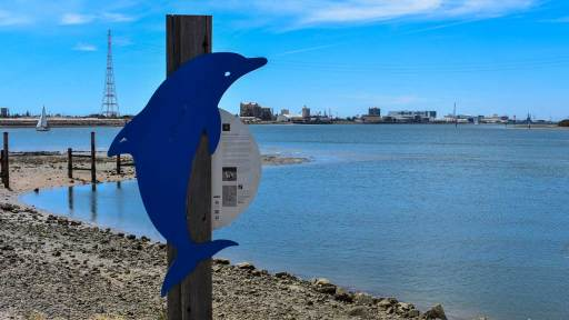 Dolphin Trail sign with the Port River in the background