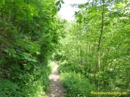 Durch lauschige Wälder