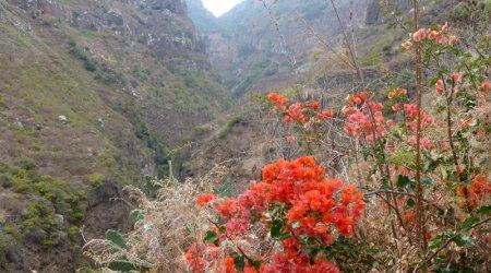 Die Wanderung im Anaga-Gebirge war unsere Top-Tour