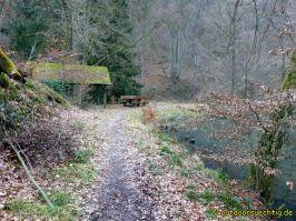 Waldschluchtenweg - 012