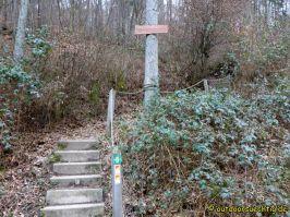 Waldschluchtenweg - 015