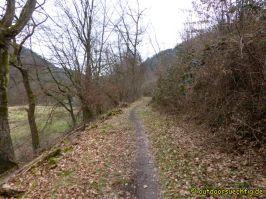 Waldschluchtenweg - 021
