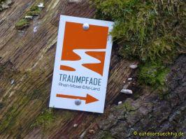Waldschluchtenweg - 029