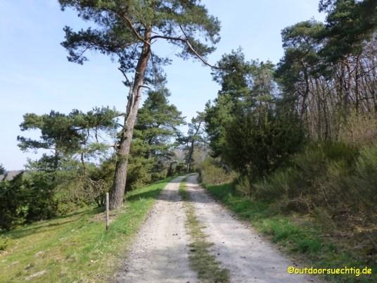 Vogtei Rundwanderweg 019