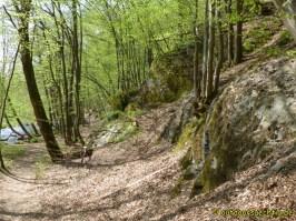 Westerwald 093