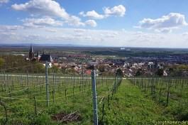 Aussicht auf den Oberrhein